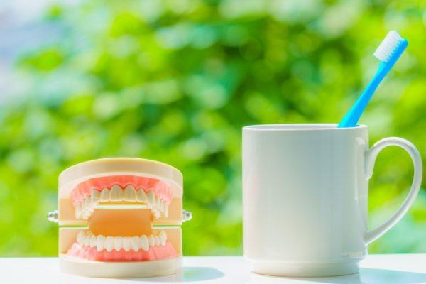 口腔ケアのススメ・・・18 Qお母さんから子供にむし歯がうつると聞きましたが本当ですか? イメージ